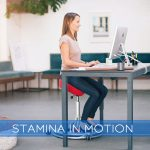 Stamina In Motion Under Desk Elliptical